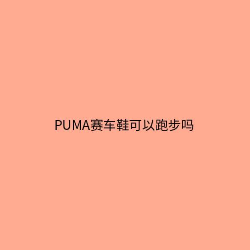 puma鞋子怎么样,彪马的鞋子品牌档次