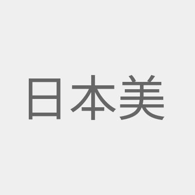 日本美容仪
