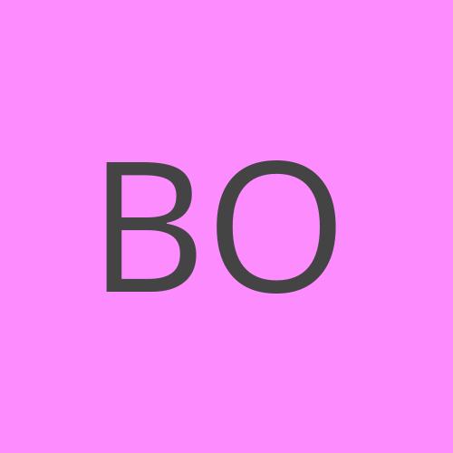 bodybod